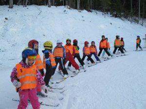 cursuri ski poiana brasov